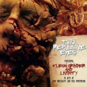 Flesh Grinder / Lividity - Two Repulsive Eyes cover art