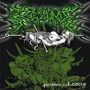 Rezume - Promo CD 2009 cover art