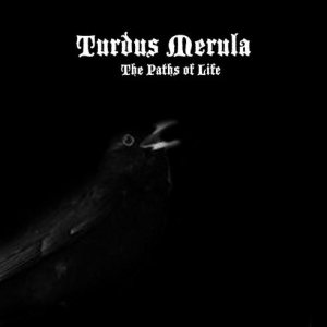 Turdus Merula - The Paths of Life cover art