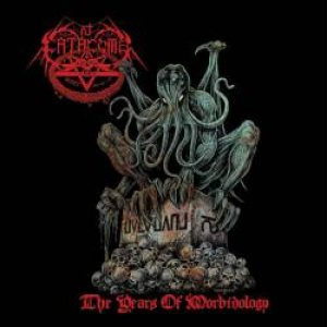 Catacomb - The Year of Morbidology