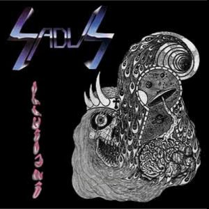 Sadus - Illusions cover art