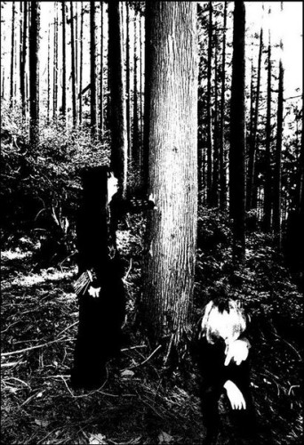 Suicide Forest photo