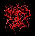 Immersed in Blood logo