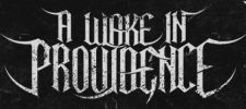 A Wake in Providence logo