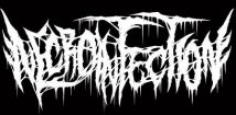 Necroinfection logo