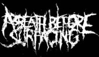A Breath Before Surfacing logo