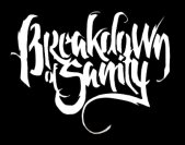 Breakdown of Sanity logo