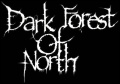 Dark Forest of North logo