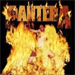 Pantera - Reinventing the Steel cover art