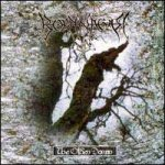 Borknagar - The Olden Domain cover art