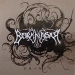 Borknagar - Origin cover art