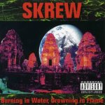 Skrew - Burning in Water, Drowning in Flame cover art