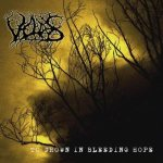 Veldes - To Drown in Bleeding Hope cover art