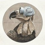 Protest the Hero - Volition cover art