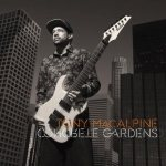 Tony MacAlpine - Concrete Gardens cover art