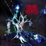 Cardinal Wyrm - Black Hole Gods cover art