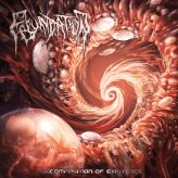 Fecundation - Decomposition of Existence