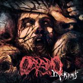 Oceano - Incisions cover art