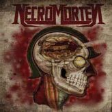 Necromorten - Warfuse cover art