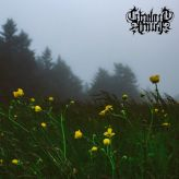 Twilight Fauna - Where Birds Sing My Name cover art