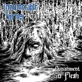 Innumerable Forms - Punishment in Flesh cover art