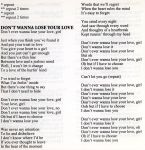 Don't Wanna Lose Your Love lyrics